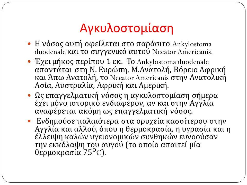 Αγκυλοστομίαση Η νόσος αυτή οφείλεται στο παράσιτο Ankylostoma duodenale και το συγγενικό αυτού Necator Americanis.