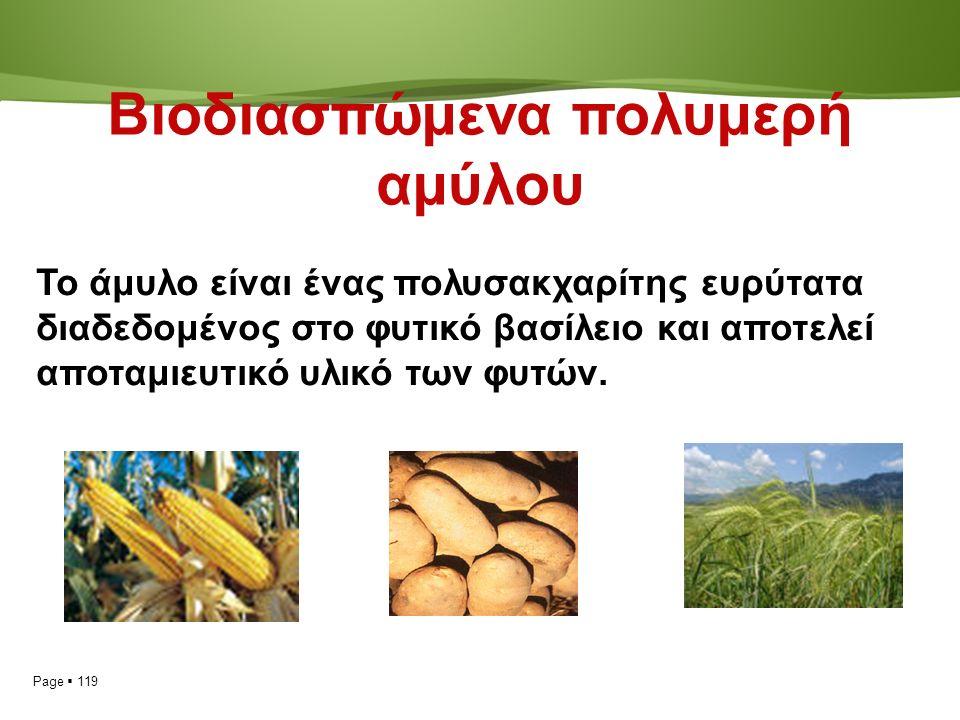 Page  119 Βιοδιασπώμενα πολυμερή αμύλου Το άμυλο είναι ένας πολυσακχαρίτης ευρύτατα διαδεδομένος στο φυτικό βασίλειο και αποτελεί αποταμιευτικό υλικό των φυτών.