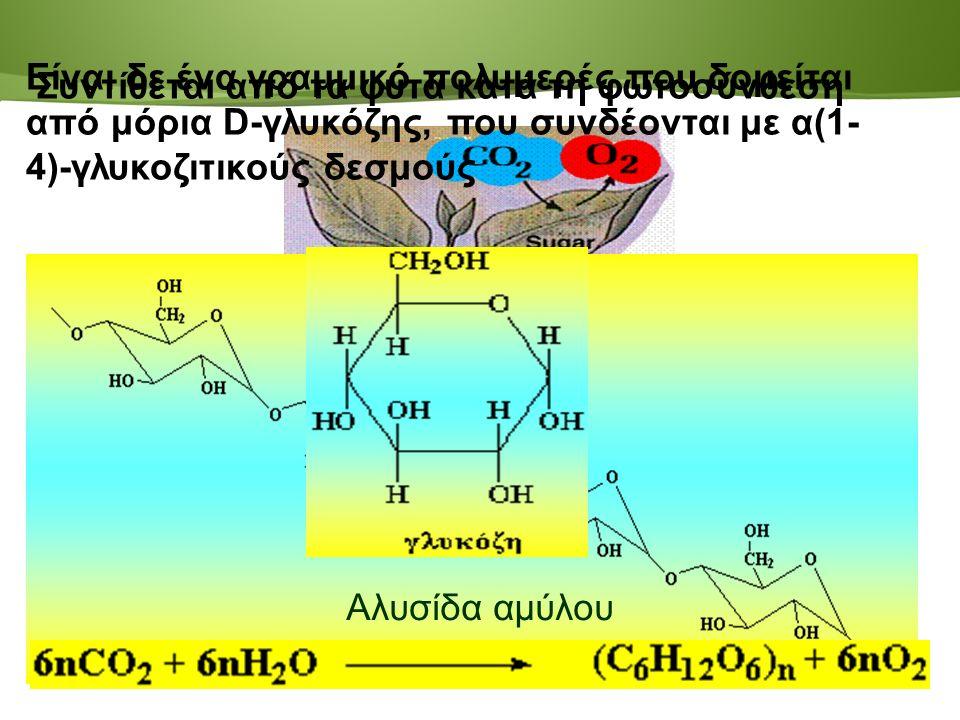 Page  120 Συντίθεται από τα φυτά κατά τη φωτοσύνθεση Είναι δε ένα γραμμικό πολυμερές που δομείται από μόρια D-γλυκόζης, που συνδέονται με α(1- 4)-γλυκοζιτικούς δεσμούς Αλυσίδα αμύλου