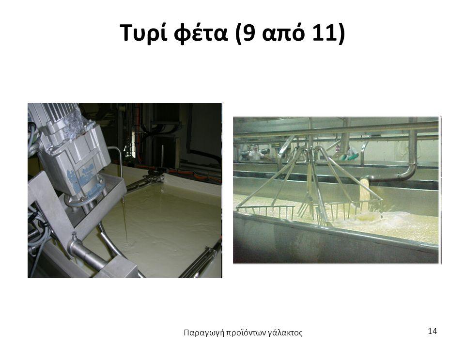 Τυρί φέτα (9 από 11) Παραγωγή προϊόντων γάλακτος 14