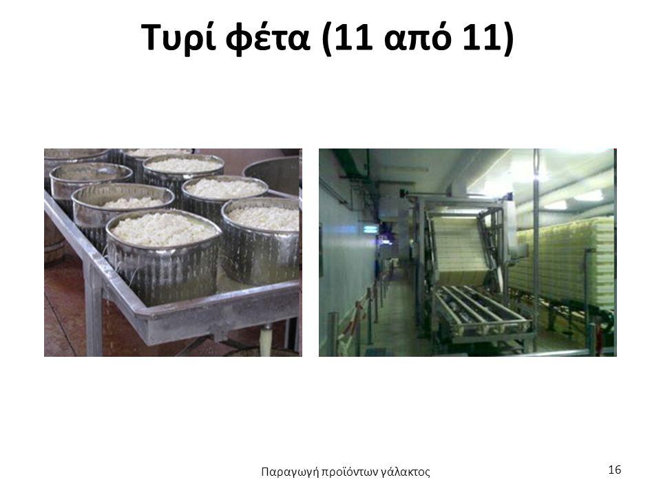 Τυρί φέτα (11 από 11) Παραγωγή προϊόντων γάλακτος 16