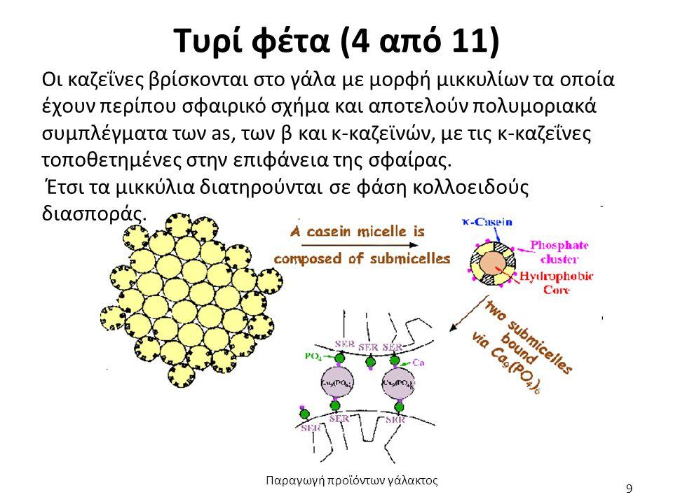 Τυρί φέτα (4 από 11) Οι καζεΐνες βρίσκονται στο γάλα με μορφή μικκυλίων τα οποία έχουν περίπου σφαιρικό σχήμα και αποτελούν πολυμοριακά συμπλέγματα των as, των β και κ-καζεϊνών, με τις κ-καζεΐνες τοποθετημένες στην επιφάνεια της σφαίρας.
