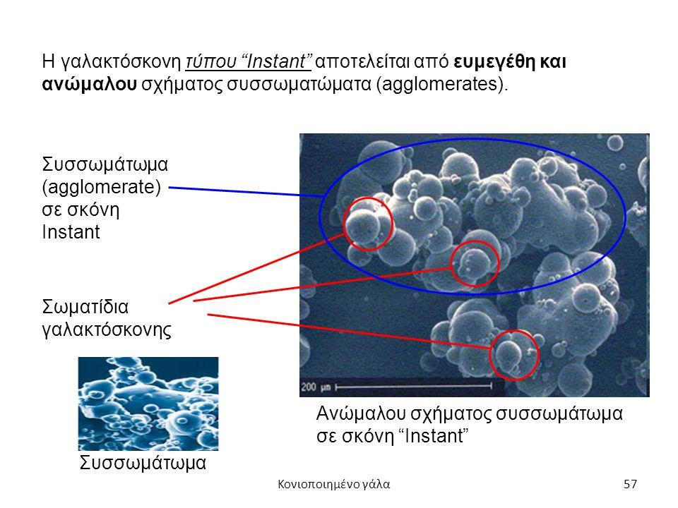 57 Η γαλακτόσκονη τύπου Instant αποτελείται από ευμεγέθη και ανώμαλου σχήματος συσσωματώματα (agglomerates).