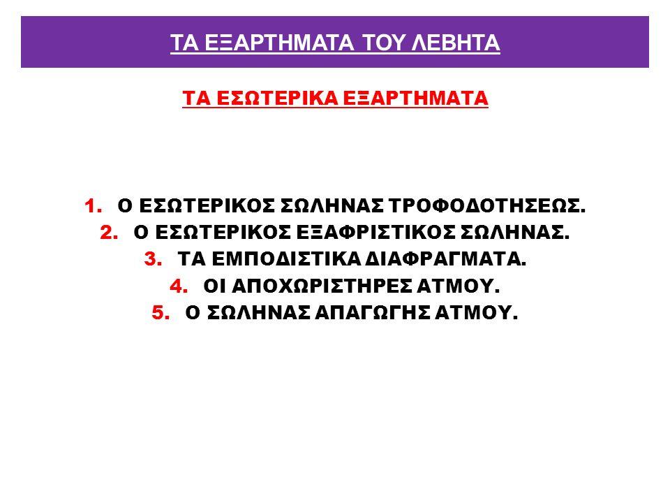 ΤΑ ΕΣΩΤΕΡΙΚΑ ΕΞΑΡΤΗΜΑΤΑ 1.Ο ΕΣΩΤΕΡΙΚΟΣ ΣΩΛΗΝΑΣ ΤΡΟΦΟΔΟΤΗΣΕΩΣ. 2.Ο ΕΣΩΤΕΡΙΚΟΣ ΕΞΑΦΡΙΣΤΙΚΟΣ ΣΩΛΗΝΑΣ. 3.ΤΑ ΕΜΠΟΔΙΣΤΙΚΑ ΔΙΑΦΡΑΓΜΑΤΑ. 4.ΟΙ ΑΠΟΧΩΡΙΣΤΗΡΕΣ ΑΤ