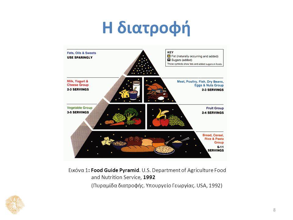 Η διατροφή 8 Εικόνα 1: Food Guide Pyramid. U.S.