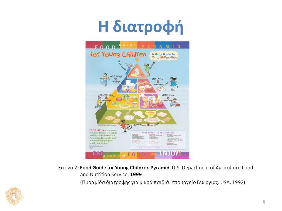 Η διατροφή 9 Εικόνα 2: Food Guide for Young Children Pyramid.
