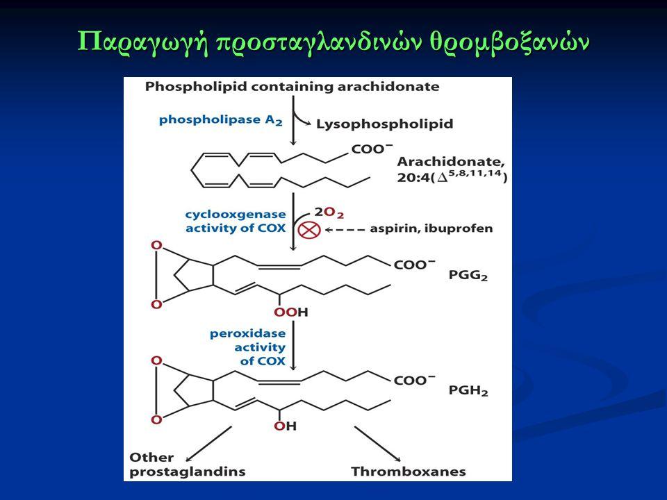 Παραγωγή προσταγλανδινών θρομβοξανών