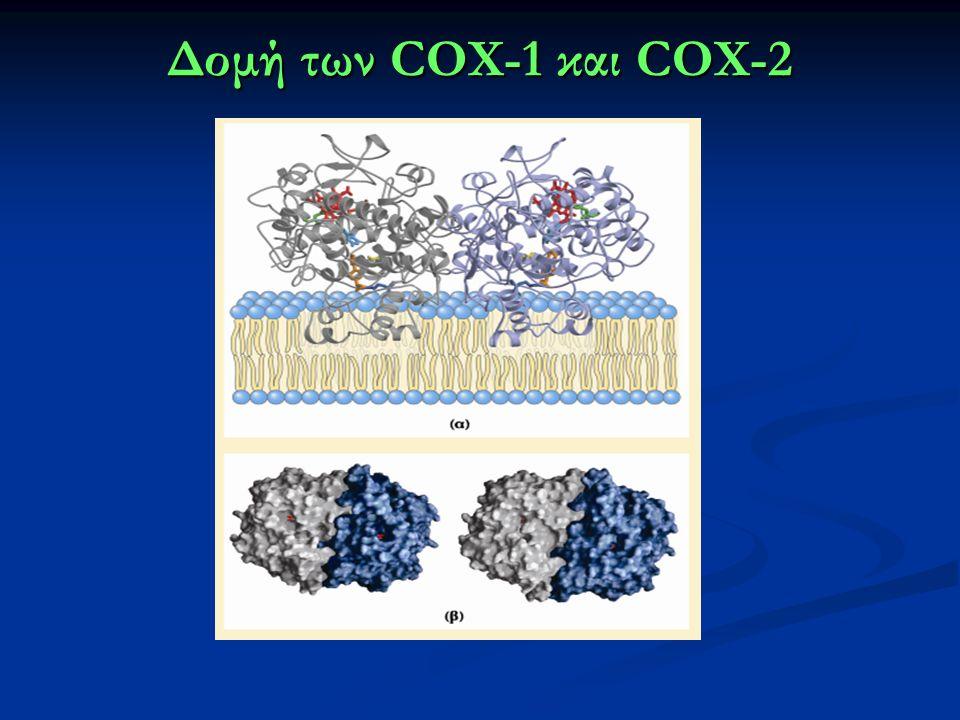 Δομή των COX-1 και COX-2