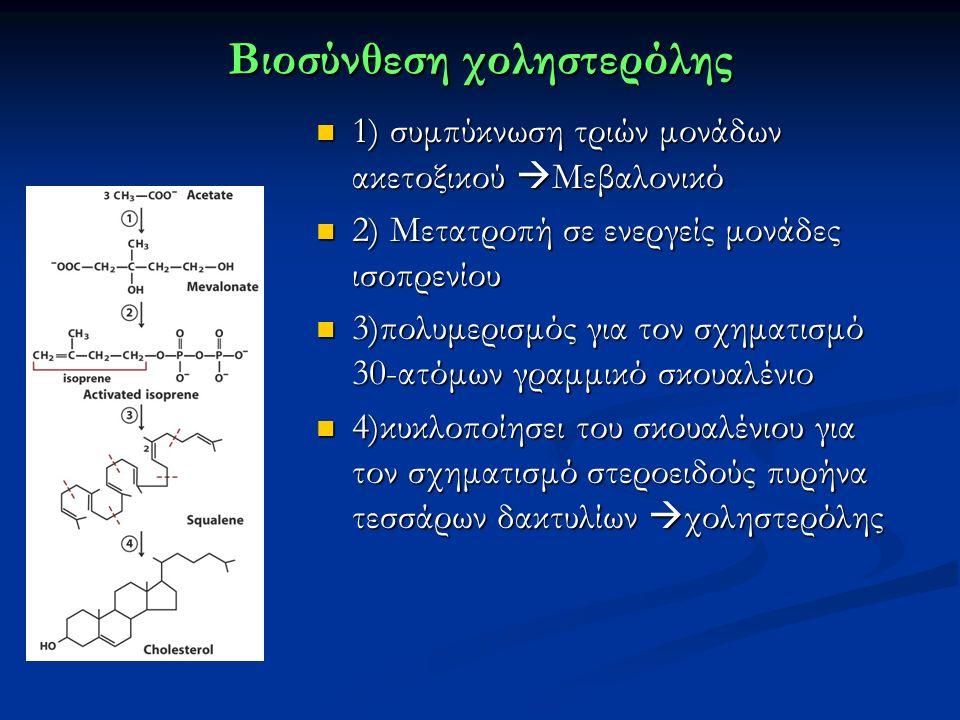 Βιοσύνθεση χοληστερόλης 1) συμπύκνωση τριών μονάδων ακετοξικού  Μεβαλονικό 2) Μετατροπή σε ενεργείς μονάδες ισοπρενίου 3)πολυμερισμός για τον σχηματισμό 30-ατόμων γραμμικό σκουαλένιο 4)κυκλοποίησει του σκουαλένιου για τον σχηματισμό στεροειδούς πυρήνα τεσσάρων δακτυλίων  χοληστερόλης