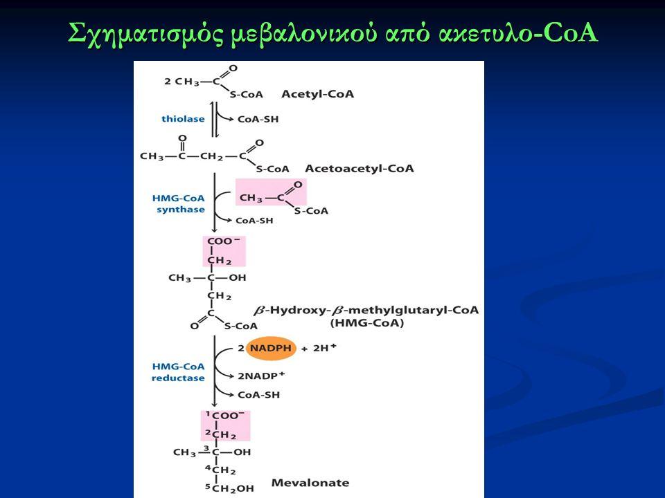 Σχηματισμός μεβαλονικού από ακετυλο-CoA