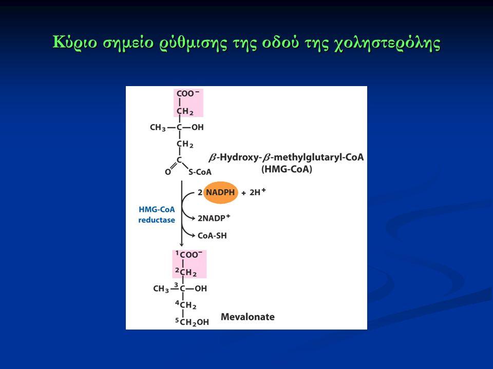 Κύριο σημείο ρύθμισης της οδού της χοληστερόλης