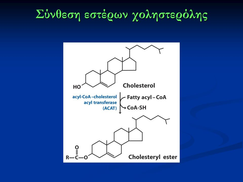 Σύνθεση εστέρων χοληστερόλης
