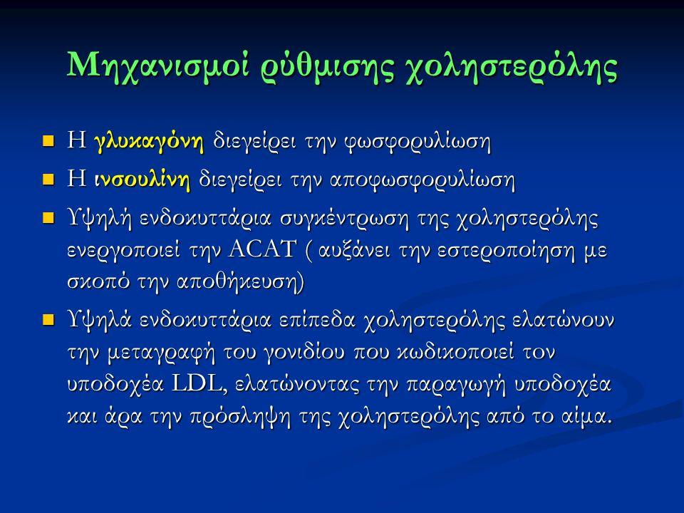 Μηχανισμοί ρύθμισης χοληστερόλης Η γλυκαγόνη διεγείρει την φωσφορυλίωση Η γλυκαγόνη διεγείρει την φωσφορυλίωση Η ινσουλίνη διεγείρει την αποφωσφορυλίωση Η ινσουλίνη διεγείρει την αποφωσφορυλίωση Υψηλή ενδοκυττάρια συγκέντρωση της χοληστερόλης ενεργοποιεί την ACAT ( αυξάνει την εστεροποίηση με σκοπό την αποθήκευση) Υψηλή ενδοκυττάρια συγκέντρωση της χοληστερόλης ενεργοποιεί την ACAT ( αυξάνει την εστεροποίηση με σκοπό την αποθήκευση) Υψηλά ενδοκυττάρια επίπεδα χοληστερόλης ελατώνουν την μεταγραφή του γονιδίου που κωδικοποιεί τoν υποδοχέα LDL, ελατώνοντας την παραγωγή υποδοχέα και άρα την πρόσληψη της χοληστερόλης από το αίμα.