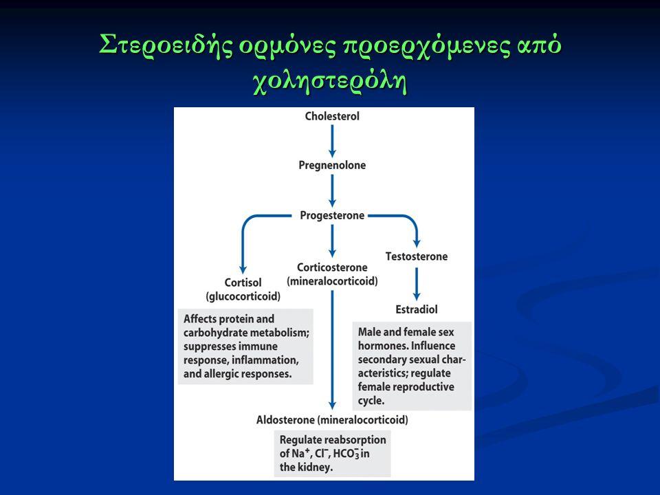 Στεροειδής ορμόνες προερχόμενες από χοληστερόλη
