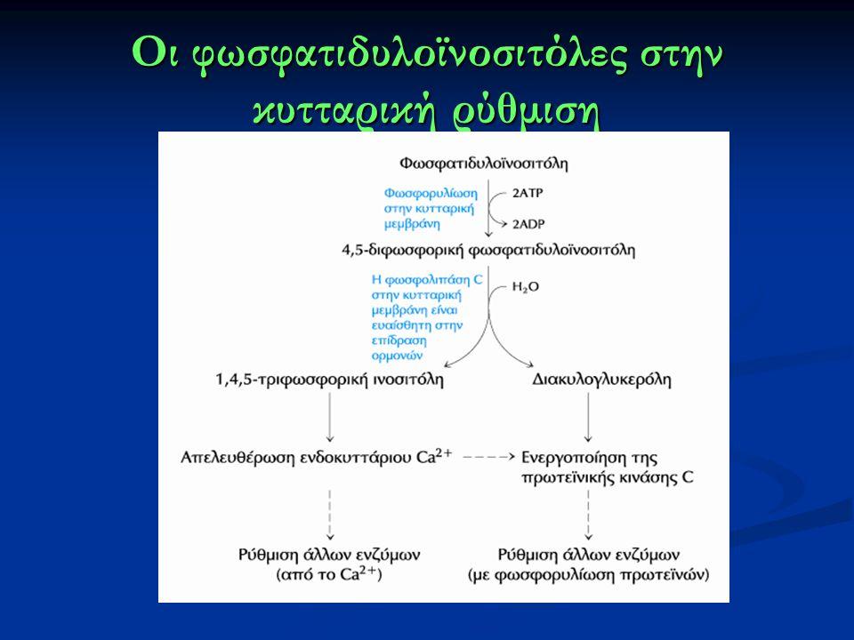 Οι φωσφατιδυλοϊνοσιτόλες στην κυτταρική ρύθμιση
