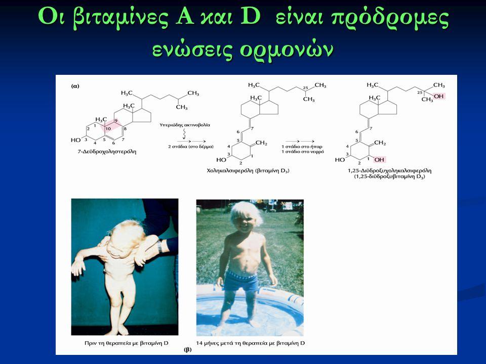 Οι βιταμίνες Α και D είναι πρόδρομες ενώσεις ορμονών