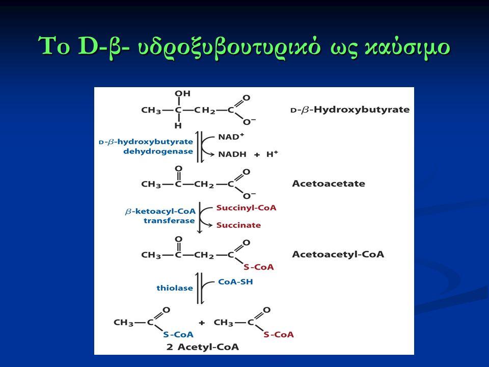 To D-β- υδροξυβουτυρικό ως καύσιμο