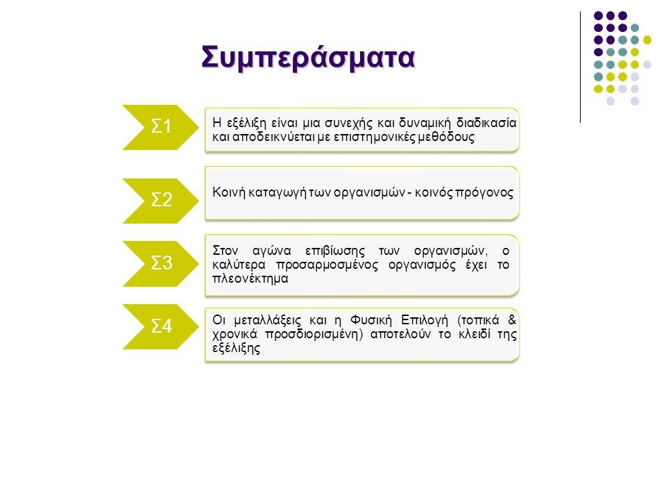 Συμπεράσματα H εξέλιξη είναι μια συνεχής και δυναμική διαδικασία και αποδεικνύεται με επιστημονικές μεθόδους Σ1 Σ2 Σ3 Σ4 Κοινή καταγωγή των οργανισμών - κοινός πρόγονος Στον αγώνα επιβίωσης των οργανισμών, ο καλύτερα προσαρμοσμένος οργανισμός έχει το πλεονέκτημα Οι μεταλλάξεις και η Φυσική Επιλογή (τοπικά & χρονικά προσδιορισμένη) αποτελούν το κλειδί της εξέλιξης