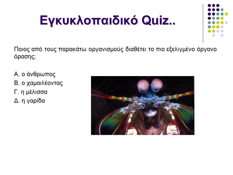 Εγκυκλοπαιδικό Quiz..