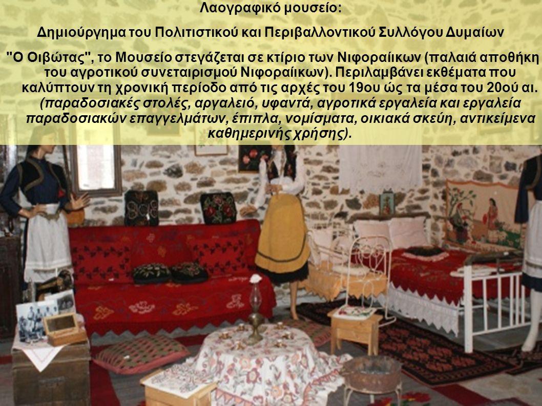 Λαογραφικό μουσείο: Δημιούργημα του Πολιτιστικού και Περιβαλλοντικού Συλλόγου Δυμαίων Ο Οιβώτας , το Μουσείο στεγάζεται σε κτίριο των Νιφοραίικων (παλαιά αποθήκη του αγροτικού συνεταιρισμού Νιφοραίικων).