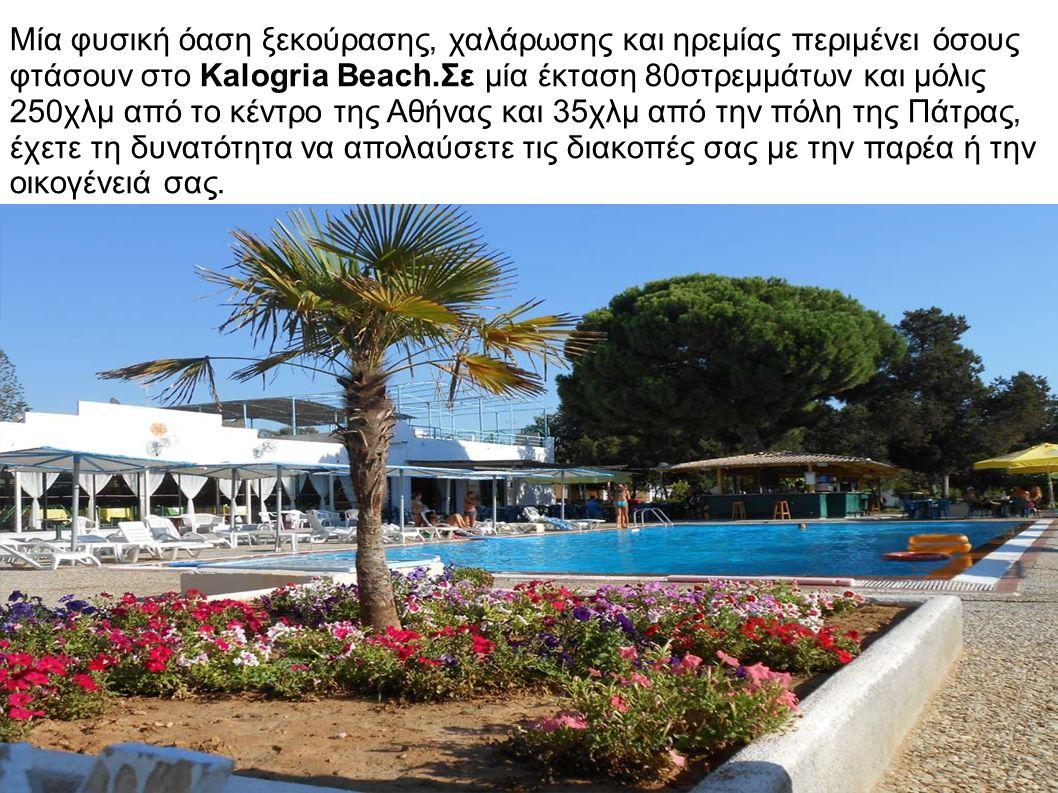 Μία φυσική όαση ξεκούρασης, χαλάρωσης και ηρεμίας περιμένει όσους φτάσουν στο Kalogria Beach.Σε μία έκταση 80στρεμμάτων και μόλις 250χλμ από το κέντρο της Αθήνας και 35χλμ από την πόλη της Πάτρας, έχετε τη δυνατότητα να απολαύσετε τις διακοπές σας με την παρέα ή την οικογένειά σας.