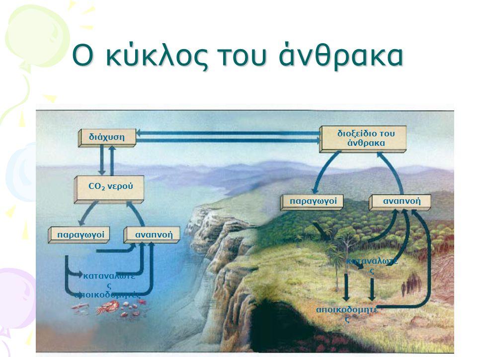 Ο κύκλος του άνθρακα διάχυση παραγωγοί καταναλωτέ ς αποικοδομητές CO 2 νερού αναπνοή παραγωγοίαναπνοή διοξείδιο του άνθρακα καταναλωτέ ς αποικοδομητέ ς