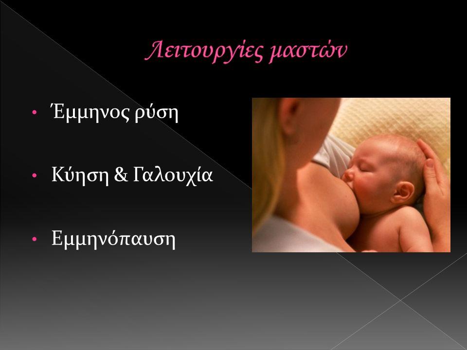 Έμμηνος ρύση Κύηση & Γαλουχία Εμμηνόπαυση