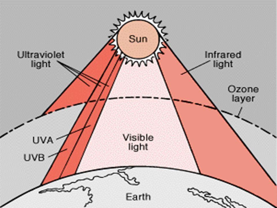 UVC0200-290Επιδερμίς-+++ - UVB1,7290-320Επιδερμίς - Θηλώδες χόριο -++ UVA6,3320-400Θηλώδες- Δικτυωτό χόριο ++++ Τύπος% ακτινο- βολία που φτάνει στην επιφάνεια της γης Μήκος Κύματος (nm) Βάθος διείσδυ σης Διείσδυση από το γυαλί των παραθύρω ν Ερυθημ ατογόνο ς δράση Καρκι- νογένε ση Επιβρα- δυνόμε- νο Μαύρι- σμα Ορατό92400-800Δικτυωτό χόριο- Υποδόριο +--+