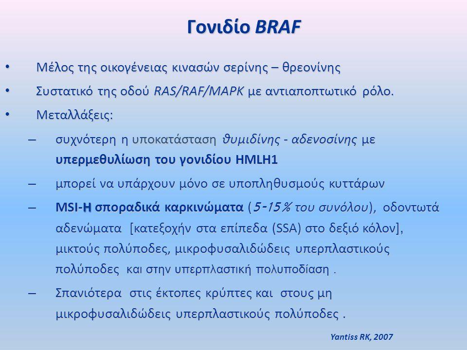 Γονιδίο BRAF Γονιδίο BRAF Μέλος της οικογένειας κινασών σερίνης – θρεονίνης Μέλος της οικογένειας κινασών σερίνης – θρεονίνης Συστατικό της οδού RAS/RAF/MAPK με αντιαποπτωτικό ρόλο.