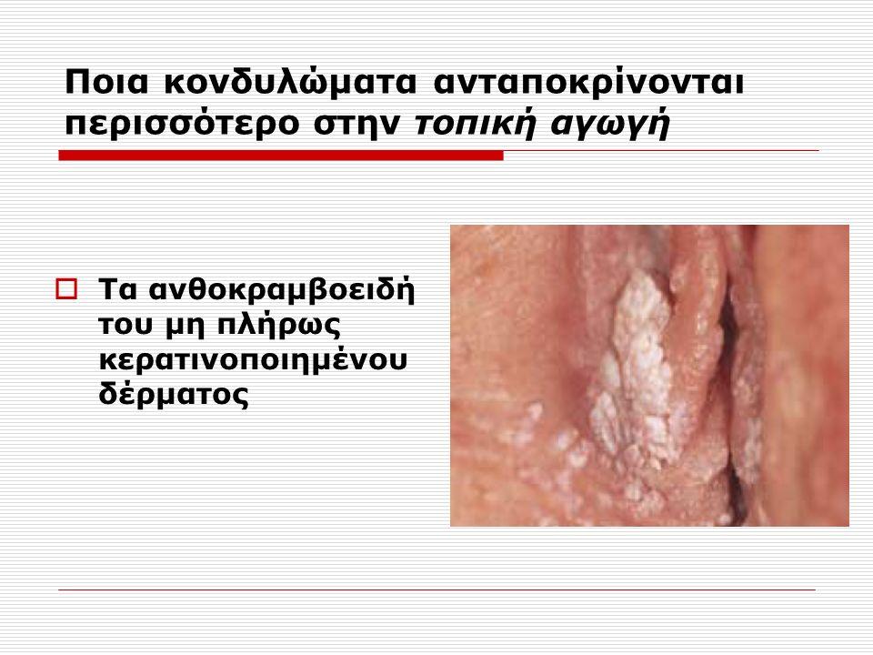  Τα ανθοκραμβοειδή του μη πλήρως κερατινοποιημένου δέρματος