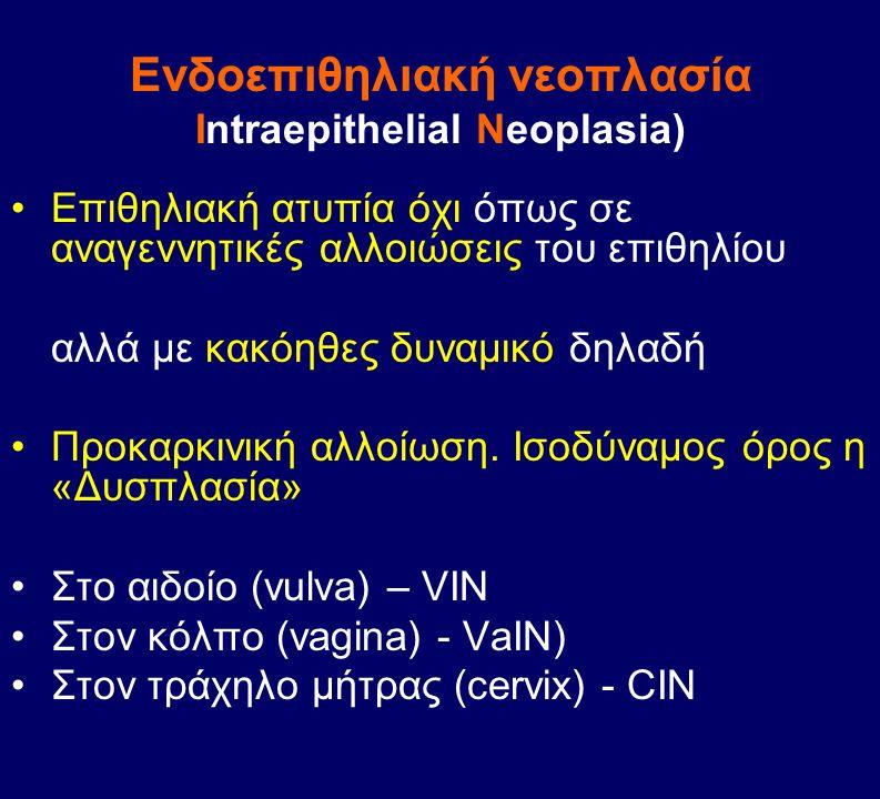 Eνδοεπιθηλιακή νεοπλασία Intraepithelial Neoplasia) Eπιθηλιακή ατυπία όχι όπως σε αναγεννητικές αλλοιώσεις του επιθηλίου αλλά με κακόηθες δυναμικό δηλ