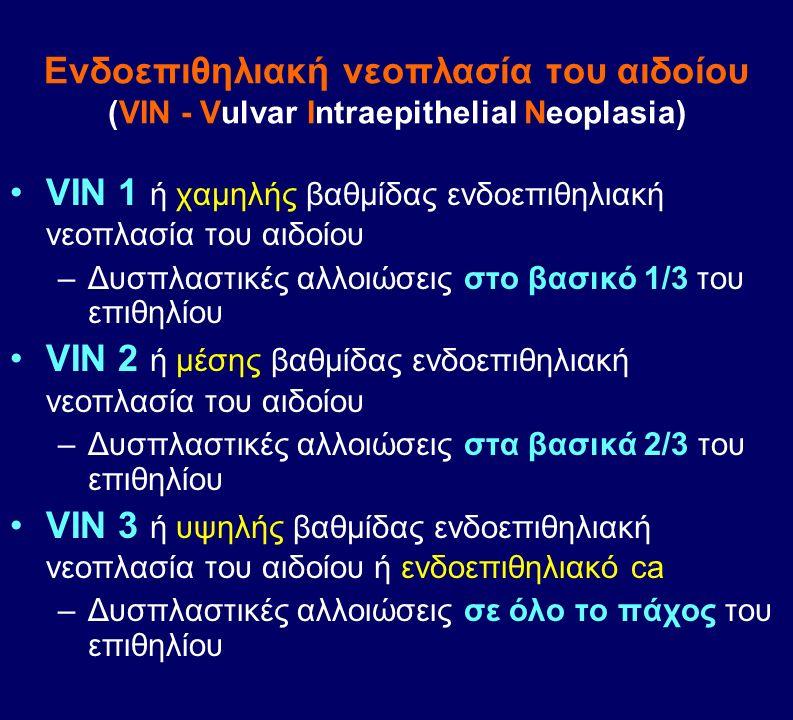 Eνδοεπιθηλιακή νεοπλασία του αιδοίου (VIN - Vulvar Intraepithelial Neoplasia) VIN 1 ή χαμηλής βαθμίδας ενδοεπιθηλιακή νεοπλασία του αιδοίου –Δυσπλαστι