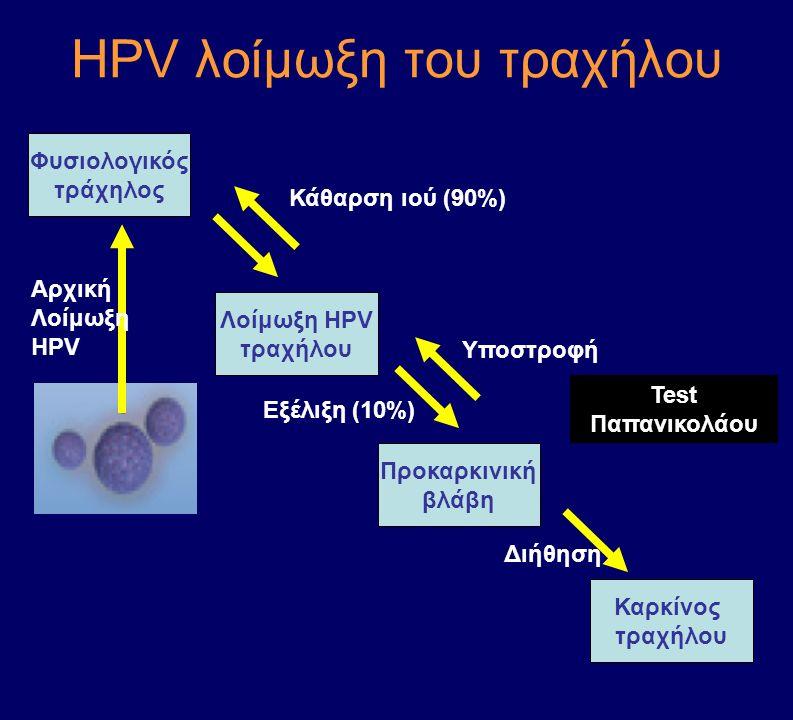 ΗPV λοίμωξη του τραχήλου Φυσιολογικός τράχηλος Λοίμωξη HPV τραχήλου Προκαρκινική βλάβη Καρκίνος τραχήλου Αρχική Λοίμωξη HPV Κάθαρση ιού (90%) Εξέλιξη
