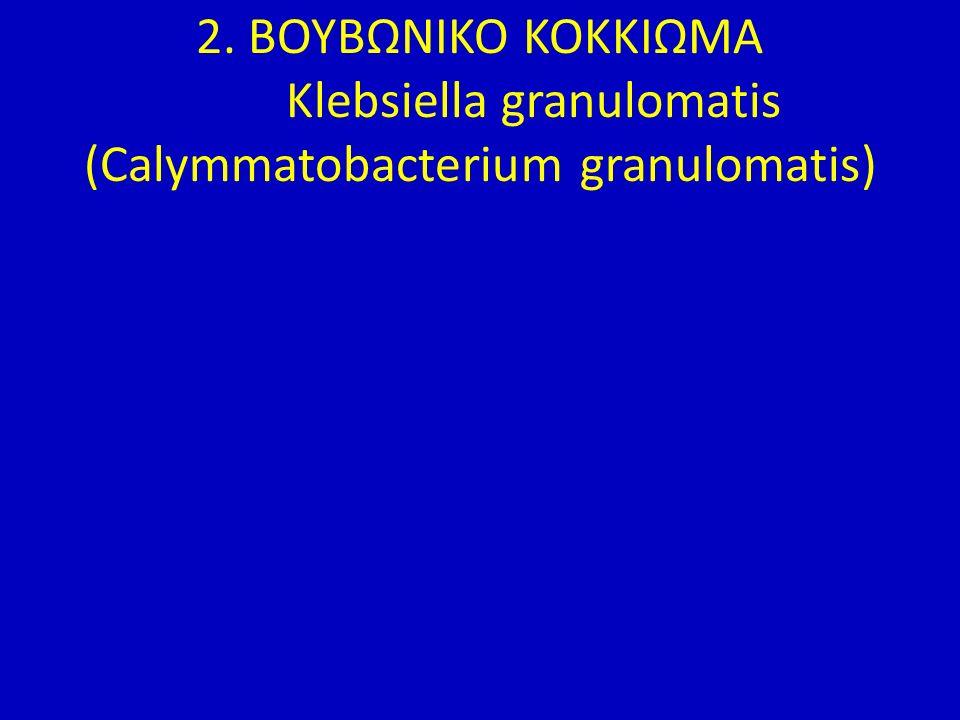 2. ΒΟΥΒΩΝΙΚΟ ΚΟΚΚΙΩΜΑ Klebsiella granulomatis (Calymmatobacterium granulomatis)