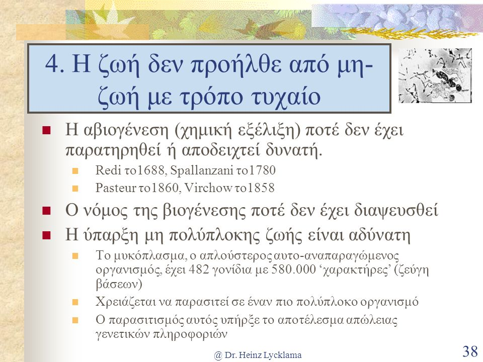 @ Dr. Heinz Lycklama 38 4.