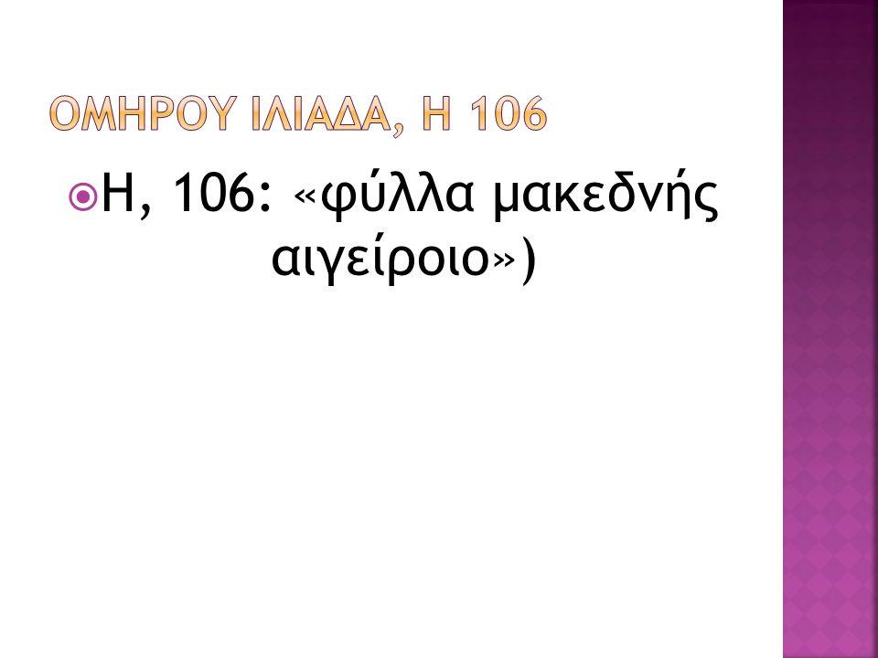  H, 106: «φύλλα μακεδνής αιγείροιο»)