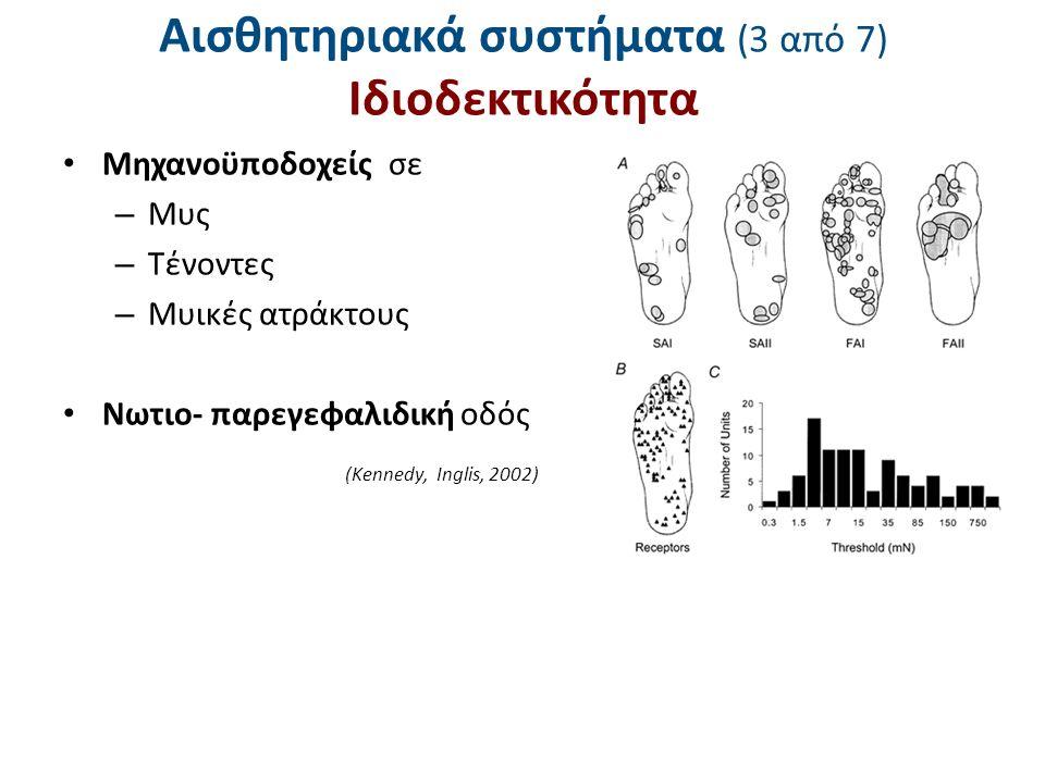 Αισθητηριακά συστήματα (3 από 7) Ιδιοδεκτικότητα Μηχανοϋποδοχείς σε – Μυς – Τένοντες – Μυικές ατράκτους Νωτιο- παρεγεφαλιδική οδός (Kennedy, Inglis, 2