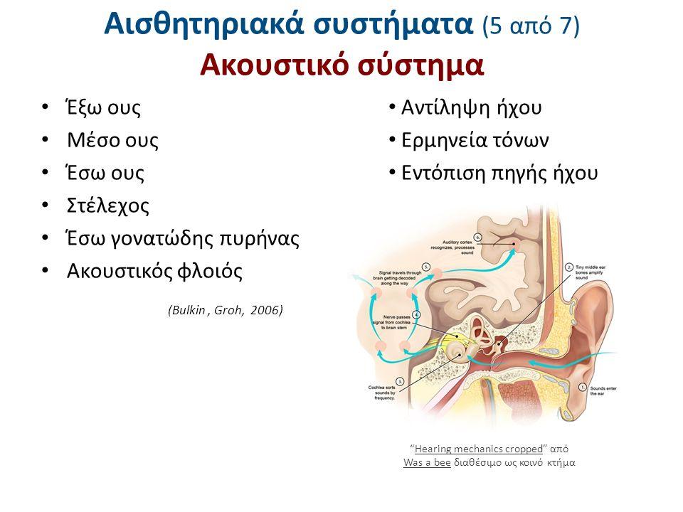 Αισθητηριακά συστήματα (5 από 7) Ακουστικό σύστημα Έξω ους Μέσο ους Έσω ους Στέλεχος Έσω γονατώδης πυρήνας Ακουστικός φλοιός Αντίληψη ήχου Ερμηνεία τό