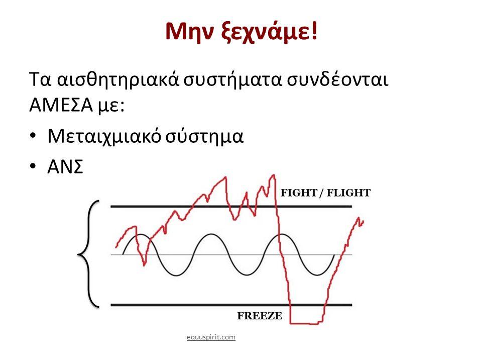 Μην ξεχνάμε! Τα αισθητηριακά συστήματα συνδέονται ΑΜΕΣΑ με: Μεταιχμιακό σύστημα ΑΝΣ equuspirit.com