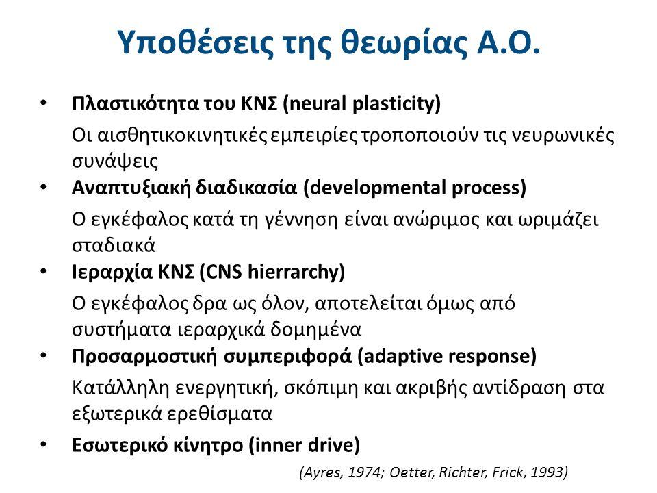 Υποθέσεις της θεωρίας Α.Ο. Πλαστικότητα του ΚΝΣ (neural plasticity) Οι αισθητικοκινητικές εμπειρίες τροποποιούν τις νευρωνικές συνάψεις Αναπτυξιακή δι