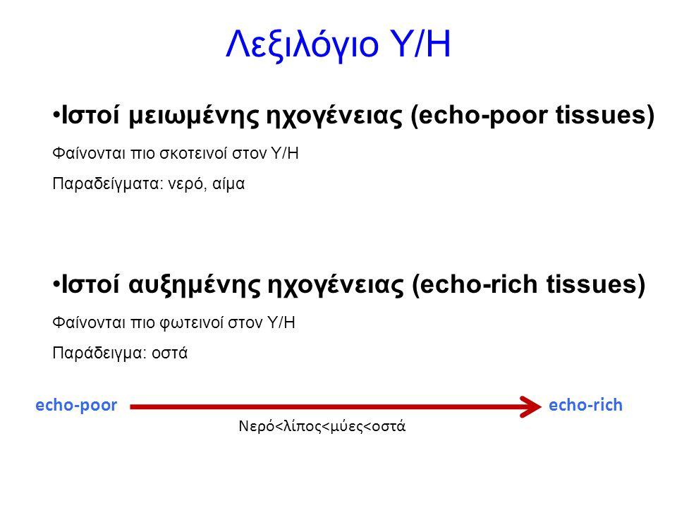 Λεξιλόγιο Υ/Η Iστοί μειωμένης ηχογένειας (echo-poor tissues) Φαίνονται πιο σκοτεινοί στον Υ/Η Παραδείγματα: νερό, αίμα Iστοί αυξημένης ηχογένειας (echo-rich tissues) Φαίνονται πιο φωτεινοί στον Υ/Η Παράδειγμα: οστά Νερό<λίπος<μύες<οστά echo-poorecho-rich