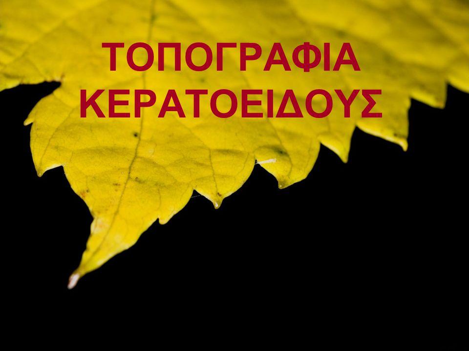 ΤΟΠΟΓΡΑΦΙΑ ΚΕΡΑΤΟΕΙΔΟΥΣ