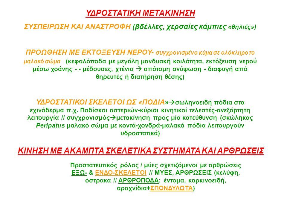 ΥΔΡΟΣΤΑΤΙΚΗ ΜΕΤΑΚΙΝΗΣΗ ΣΥΣΠΕΙΡΩΣΗ ΚΑΙ ΑΝΑΣΤΡΟΦΗ (βδέλλες, χερσαίες κάμπιες «θηλιές») ΠΡΟΩΘΗΣΗ ΜΕ ΕΚΤΟΞΕΥΣΗ ΝΕΡΟΥ- συγχρονισμένο κύμα σε ολόκληρο το μα