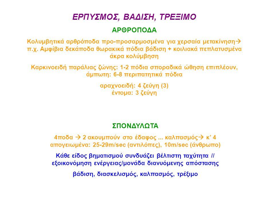 ΕΡΠΥΣΜΟΣ, ΒΑΔΙΣΗ, ΤΡΕΞΙΜΟ ΑΡΘΡΟΠΟΔΑ Κολυμβητικά αρθρόποδα προ-προσαρμοσμένα για χερσαία μετακίνηση  π.χ. Αμφίβια δεκάποδα θωρακικά πόδια βάδιση + κοι
