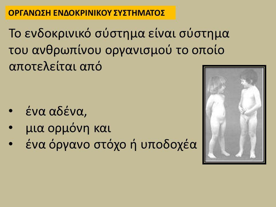 ένα αδένα, μια ορμόνη και ένα όργανο στόχο ή υποδοχέα Το ενδοκρινικό σύστημα είναι σύστημα του ανθρωπίνου οργανισμού το οποίο αποτελείται από ΟΡΓΑΝΩΣΗ