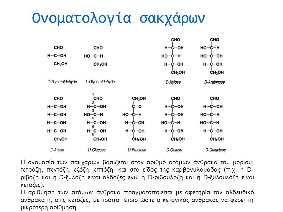 Οι πολυσακχαρίτες κλασσικά διακρίνονται ως εξής:  Πολυσακχαρίτες περιοδικής αλληλουχίας.