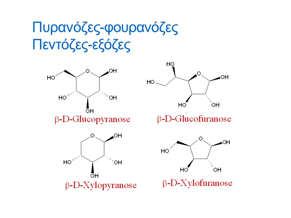 Αμινοσάκχαρα  Τα αμινοσάκχαρα είναι θεμελιώδη συστατικά των βακτηριακών πολυσακχαριτών.
