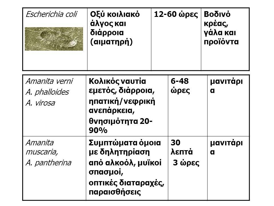 Escherichia coliΟξύ κοιλιακό άλγος και διάρροια (αιματηρή) 12-60 ώρεςΒοδινό κρέας, γάλα και προϊόντα Amanita verni A.