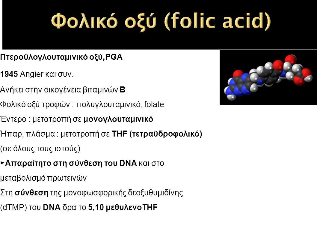 Πτεροϋλογλουταμινικό οξύ,PGA 1945 Angier και συν.