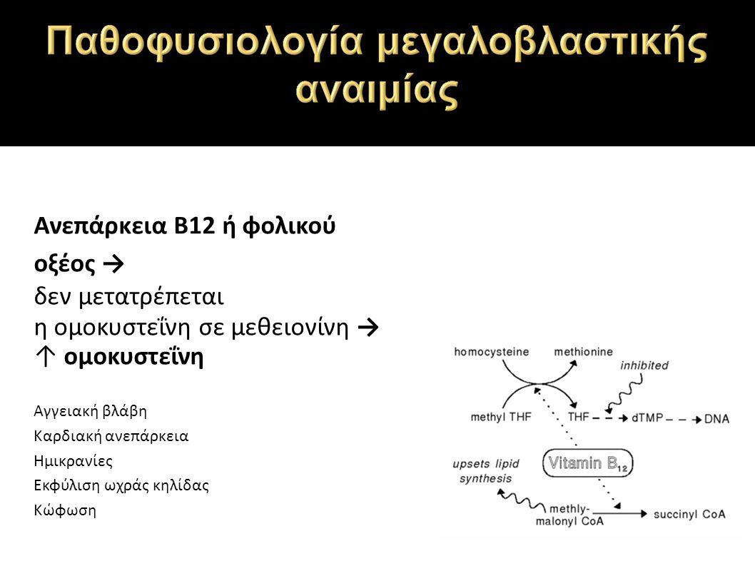 Ανεπάρκεια Β12 ή φολικού οξέος → δεν μετατρέπεται η ομοκυστεΐνη σε μεθειονίνη → ↑ ομοκυστεΐνη Αγγειακή βλάβη Καρδιακή ανεπάρκεια Ημικρανίες Εκφύλιση ωχράς κηλίδας Κώφωση